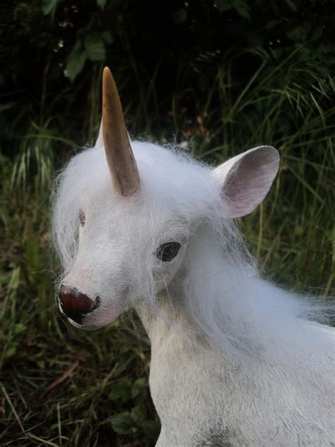 Baby Unicorn by Pin Unicorn Pictures All About Unicorns On