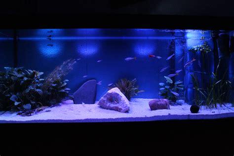 Aquarium Glas Lackieren by Aquarienabdeckung Und Cooltwiled Beleuchtung Selbst Gebaut