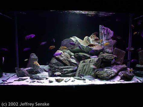 Aga Aquascaping Akwarium Org Profesjonalne Urządzanie Akwari 243 W