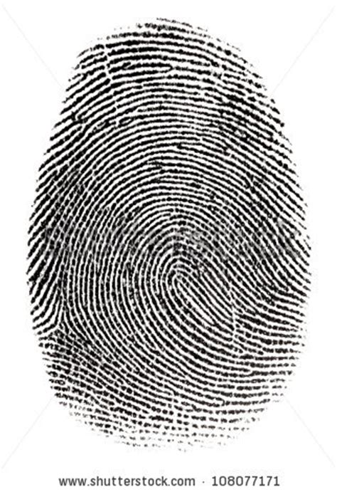 How To Pass A Fingerprint Background Check Fingerprint Stock Images Royalty Free Images Vectors