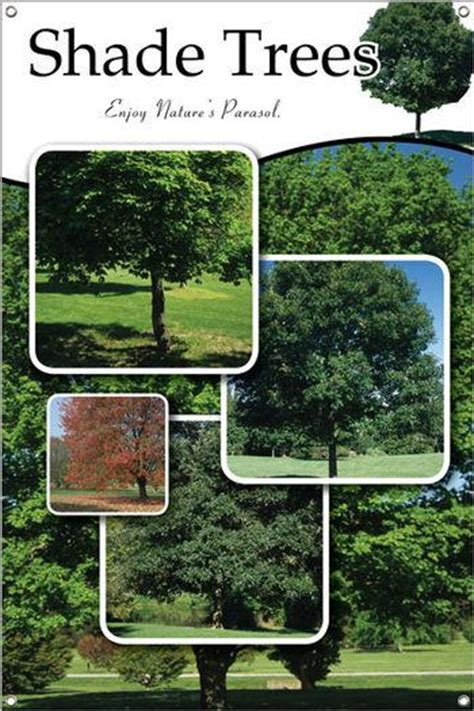 Garden Center Marketing Shade Trees 24 Quot X36 Quot Sided Vinyl Banner