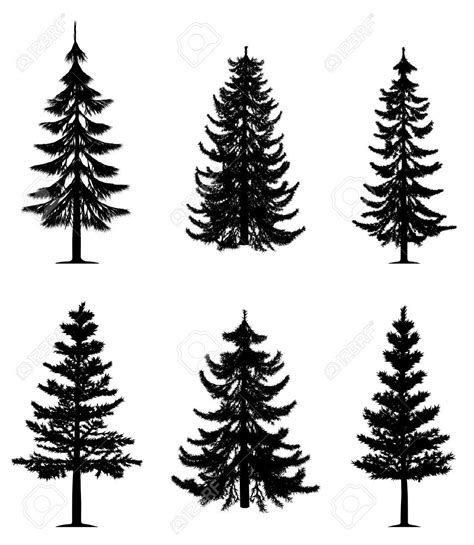free clipart collection pine trees collection royalty free cliparts vectors and