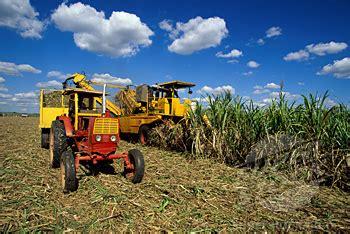 in experiment, cuba liberalizes sale of farming equipment
