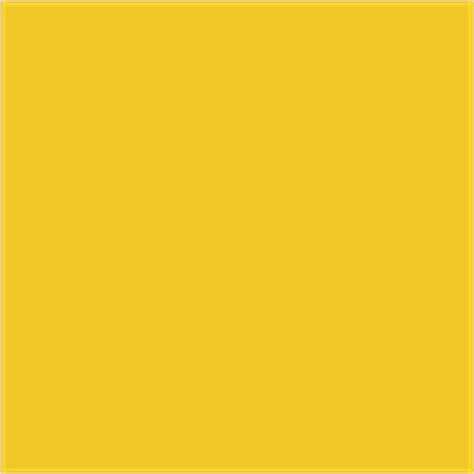 bs381c 309 canary yellow