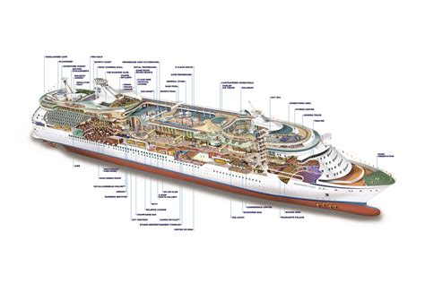 Independence Of The Seas Cabin Layout build wooden cabin plan independence of the seas plans
