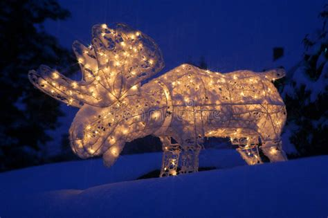 lighted yard decorations lighted moose yard decoration princess decor