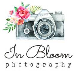 home » in bloom photography