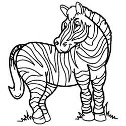 Zebra Outline Coloring Page by Coloring Now 187 Archive 187 Zebra Coloring Pages