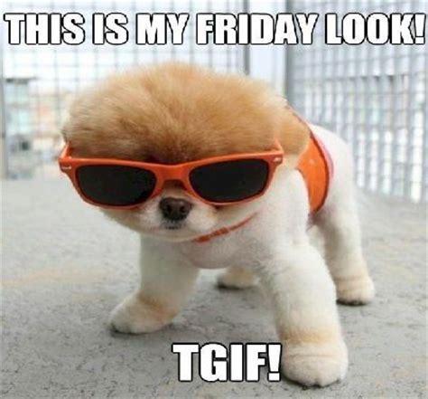 Funny Friday Memes Tumblr - best 20 happy friday meme ideas on pinterest