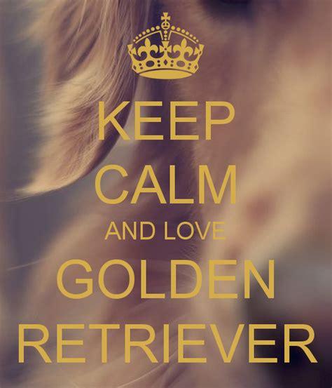 keep calm and golden retrievers keep calm and golden retriever keep calm and carry on image generator
