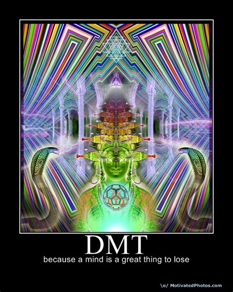 Psychedelic Meme - higher perspective dimethyltryptamine dmt