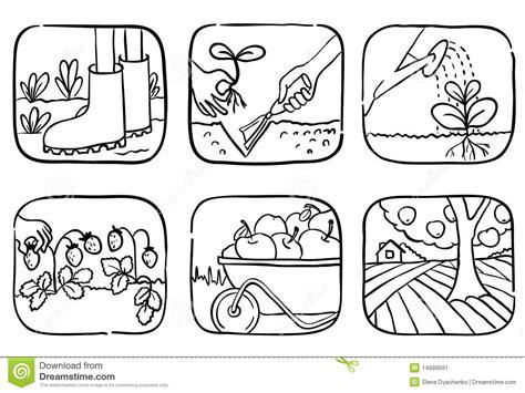 imagenes de huertas escolares para colorear iconos que cultivan un huerto imagen de archivo imagen