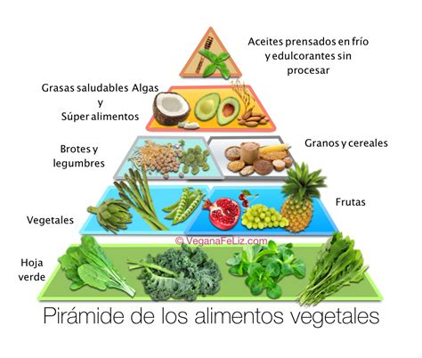 piramide de alimentos pir 225 mide de alimentos vegetales y o veganos vegana feliz