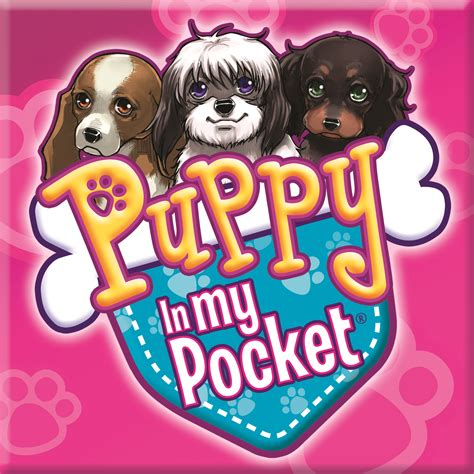 puppy in my pocket puppy in my pocket 174 hits the runway with new fashion puppies
