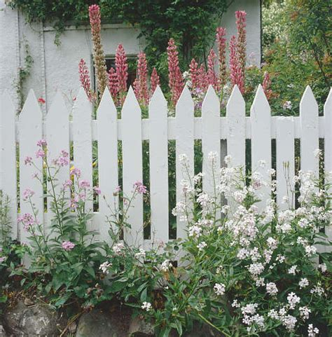 cottage garden fence southern lagniappe the charm of a cottage garden