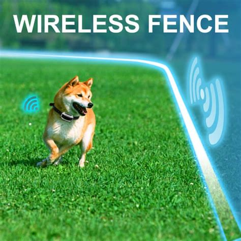 wireless invisible fence 25 best ideas about fence on diy fence fence ideas and wire fence
