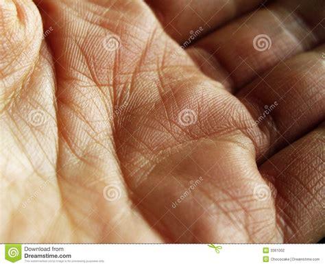 macro closeup human palm skin high stock photo 32845867 up stock photo image of macro lines 3361002