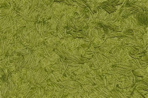 Carpet Images For Living Room Free Photo Carpet Green Synthetic Fiber Free Image On
