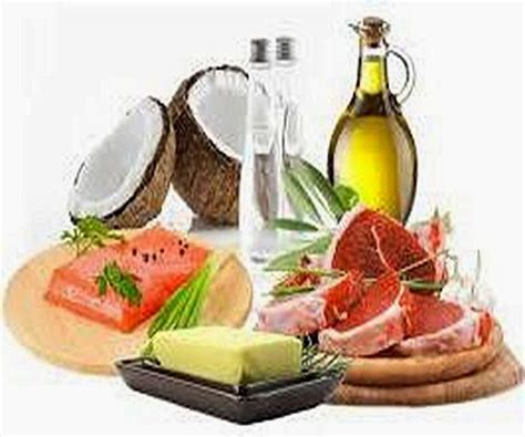 carbohydrates zoology differences between carbohydrates proteins and fats lipids
