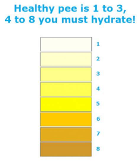 hydration level hydration level chart pictures to pin on pinsdaddy