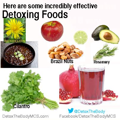 What Foods Help Detox Your by Detoxing Foods Detox Your