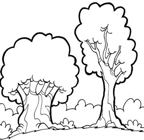 Imagenes Para Colorear Bosque   bosques dibujos para colorear