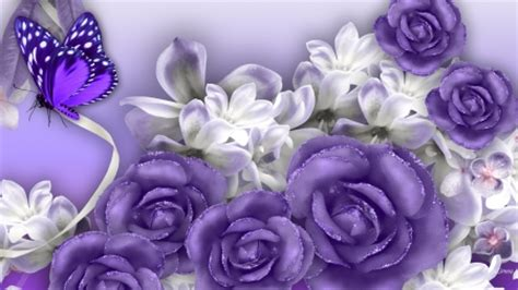 firefox themes purple lovely lavender roses flowers nature background