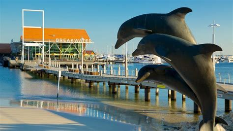 boat parts hillarys hillarys boat harbour perth expedia sg