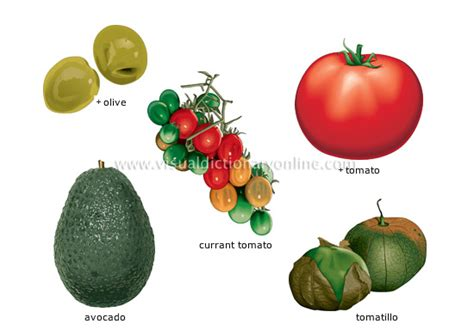 google images vegetables world wide food