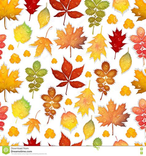 leaf pattern windbreak vector autumn doodles card hand draw umbrellas and leafs