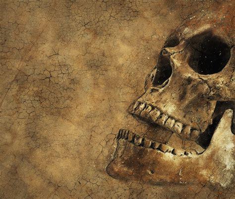 skull background texture  image  pixabay