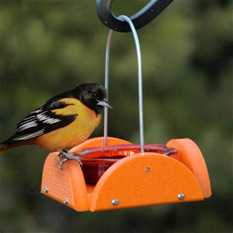 woodlink going green oriole jelly feeder orange