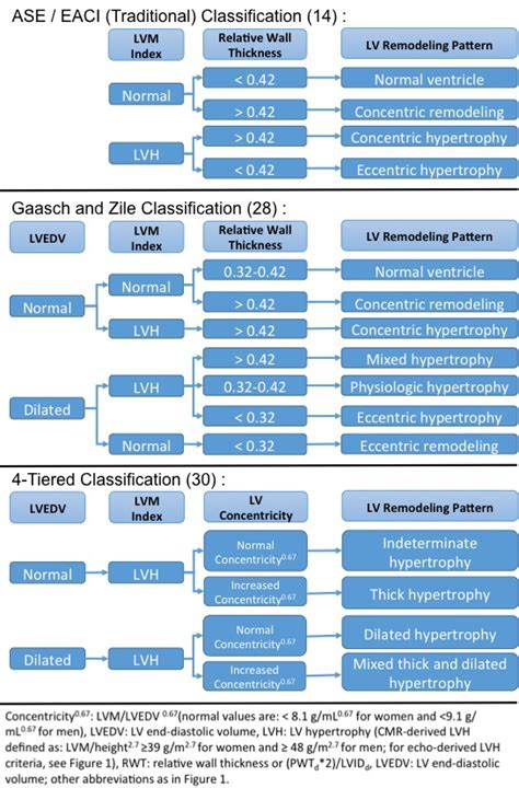 pattern classification approach to evaluation function learning approaches to echocardiographic assessment of left