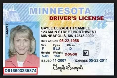 Find Drivers License Number Drivers License Number Location State Id Number Location Elsavadorla