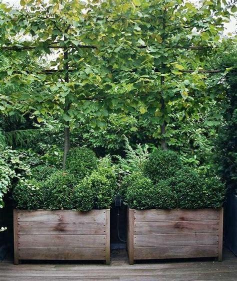 Planter Screen by Planter Screen Garden Pool