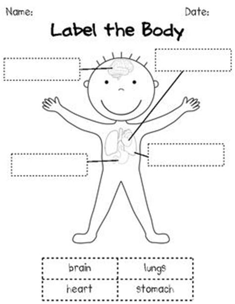 human body coloring pages for kindergarten how our bodies work k 1 human body science unit human