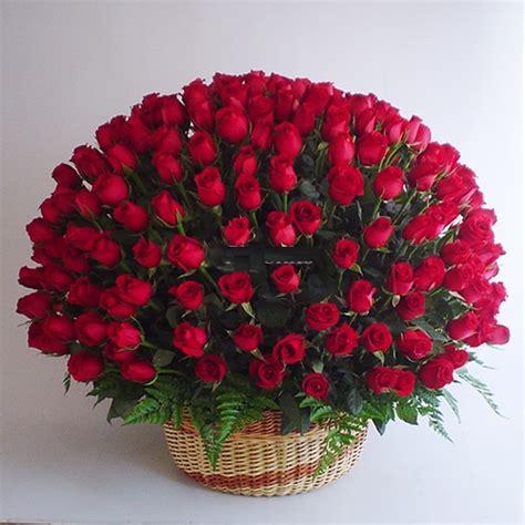 imagenes de arreglos de rosas hermosas en escritorio de oficina im 225 genes de rosas rojas blancas azules negras ramos y