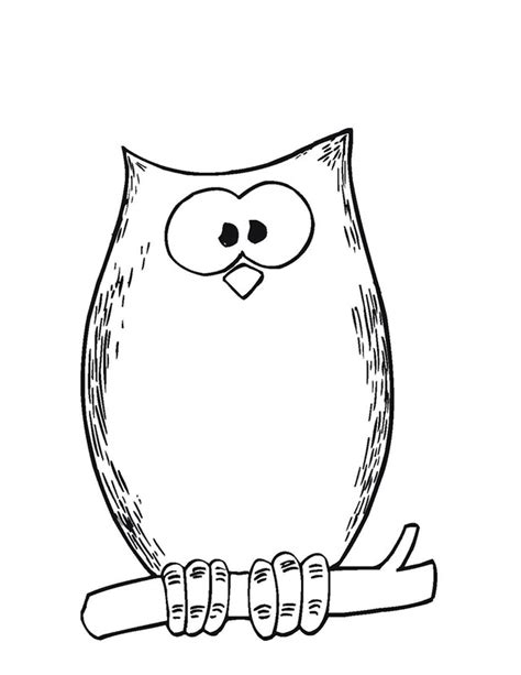 Template Owl by Owl Template Animal Templates Free Premium Templates