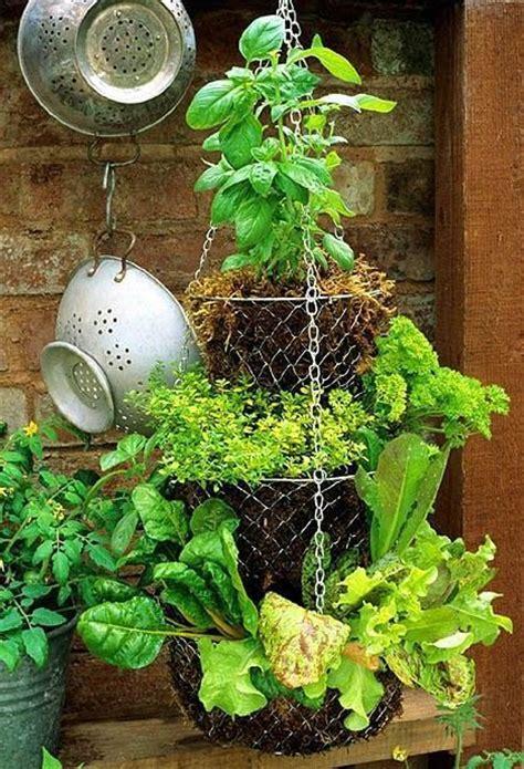 diy herb garden diy herb container garden tuin pinterest