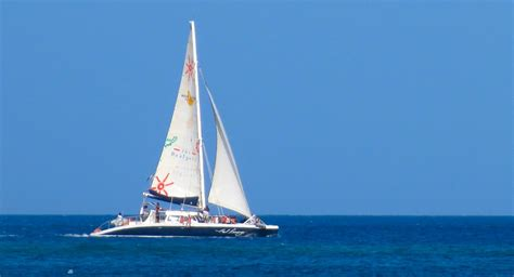 catamaran trips barbados barbados sailing catamaran cruises and sailing charters