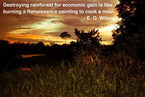 amazon quote amazon rainforest quotes quotesgram