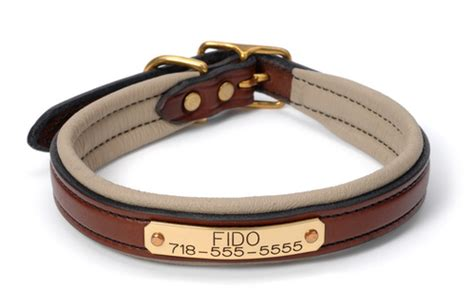leather collars with name plate leather collars with name plate www pixshark images galleries with a bite
