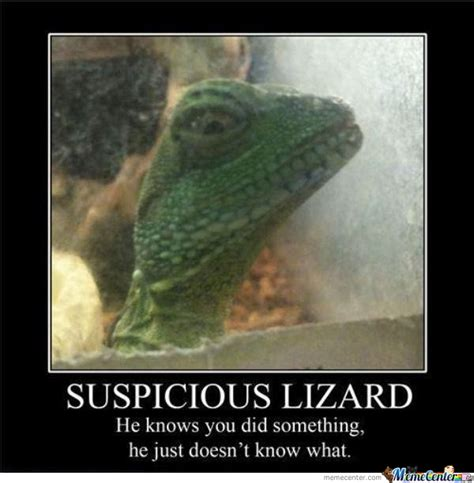 Suspicious Meme - suspicious lizard by thecrimsonshadow meme center