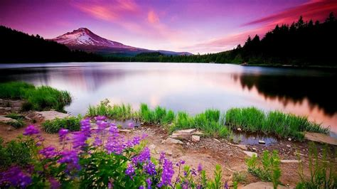computer themes nature free download colorful lake mountains full hd nature wallpapers free