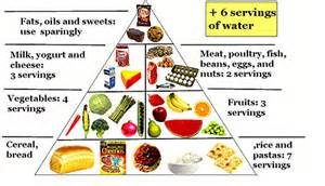 essential components of tennis players diet and nutrition