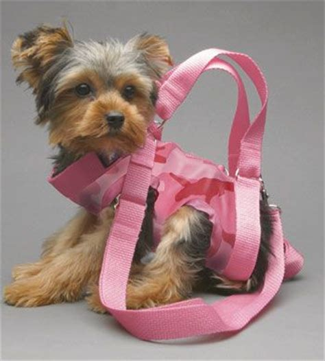 yorkie purse carrier purse carrier pink camouflage pattern diy threads yorkie purses