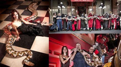 film hamil ular medusa resmi jadi ular terbesar sedunia kabar berita