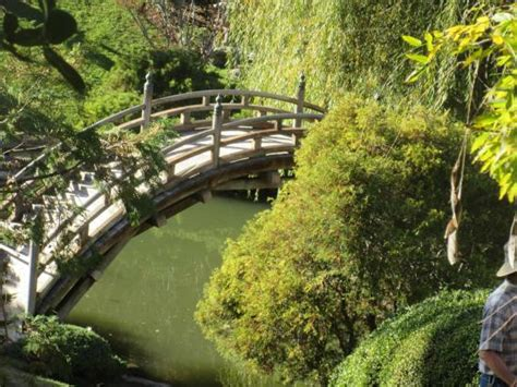 Huntington Botanical Gardens Hours Huntingtons Put In This Japanese Garden Huntington Library San Marino Ca Picture Of The