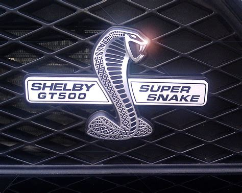 logo ford mustang shelby ford mustang shelby logo image 249