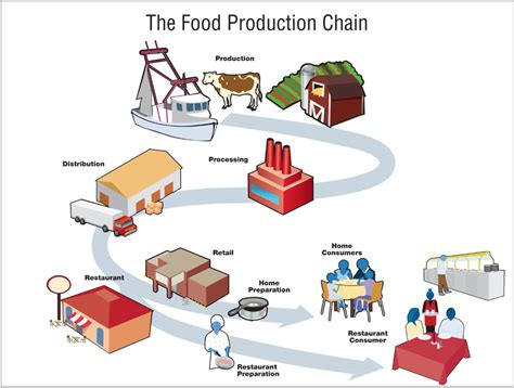 food producing react home sustainably and intelligently local farming vs big agribusiness the real costs